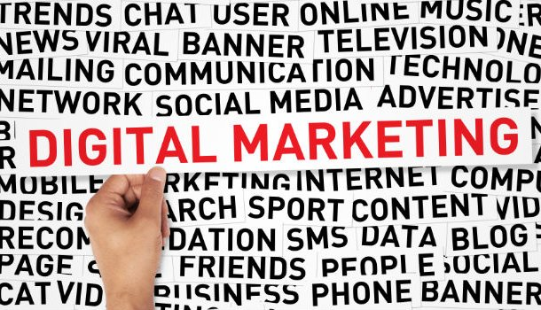 How SMBs Can Capture Digital Marketing Success